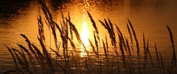 sunset-2089981_960_720
